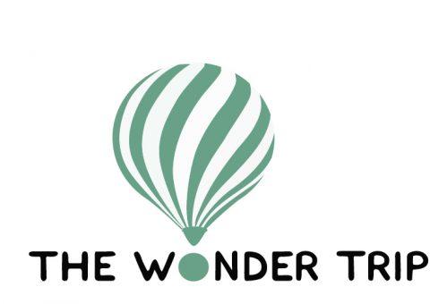 thewondertrip